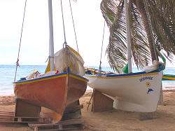 traditional sail ship, Guadeloupe